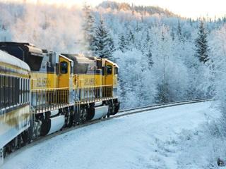 anchorage new year train ride