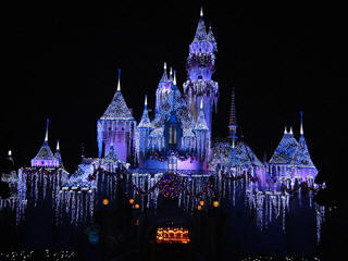 Disneyland new year lights
