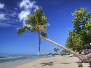 Samoa tropical beach